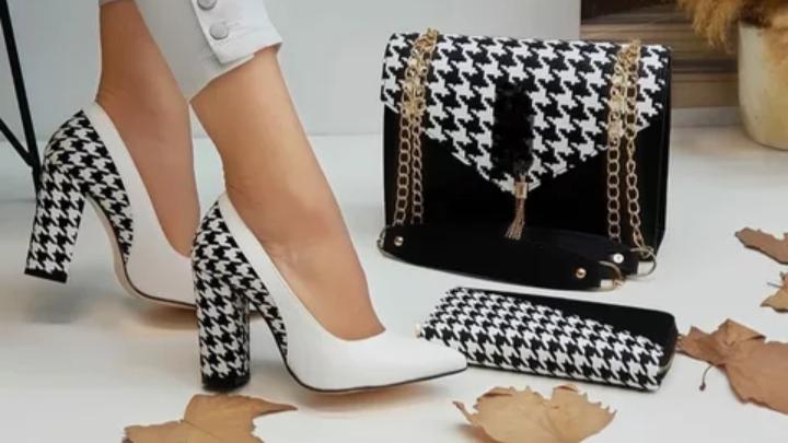 Women's handbag and shoes set,