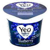 Yeo Valley Blueberry 150g