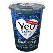 Yeo Valley Blueberry 500g