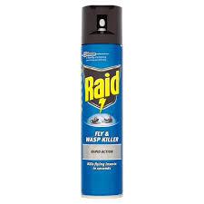 Raid Fly Spray