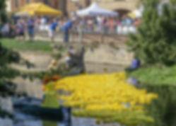 Event Welland Ducks.jpg