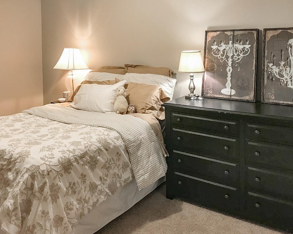 Fort worth TCU apartment dorm bedroom decor