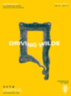 DrivingWilde_WebsitePoster_v03.jpg
