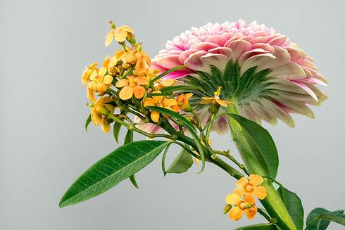 exoctic Blumen