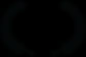 OFFICIAL SELECTION - Boston Internationa