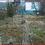 Thumbnail: MONTFERMEIL Maison T5 130 m² Jardin (93370)