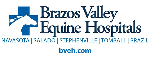 Brazos Valley Equine Hospital.png