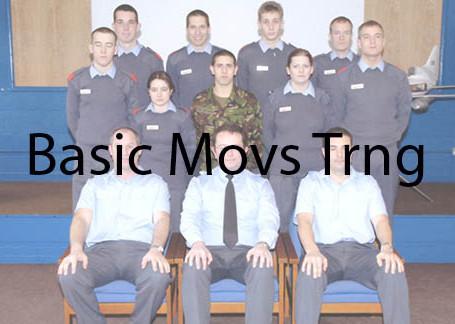 Basic Movements Training Courses