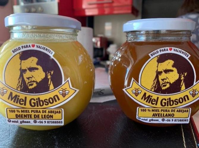 """Fin de la historia: Mel Gibson baja la guardia y llega a un buen acuerdo con """"Miel Gibson"""""""
