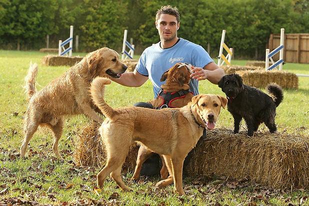 Eddie & Dogs.jpg
