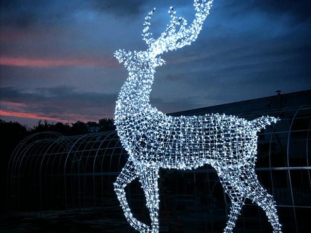 Enchanted christmas fixtures