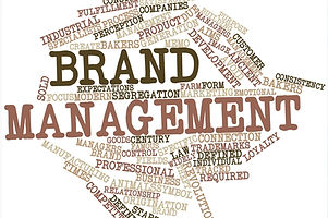 Brand Management & Image Development