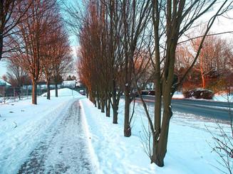 Snow removal of communal sidewalks