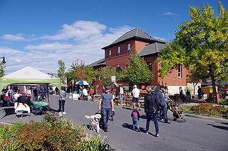 Cranbrook-Fall-Festival-4.jpg