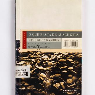 O que resta de Auschwitz, Agamben