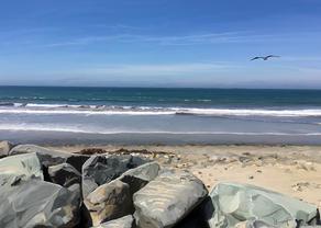 Old Man's Beach San Onofre