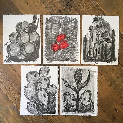 Garden Delight - Graphite Sketches
