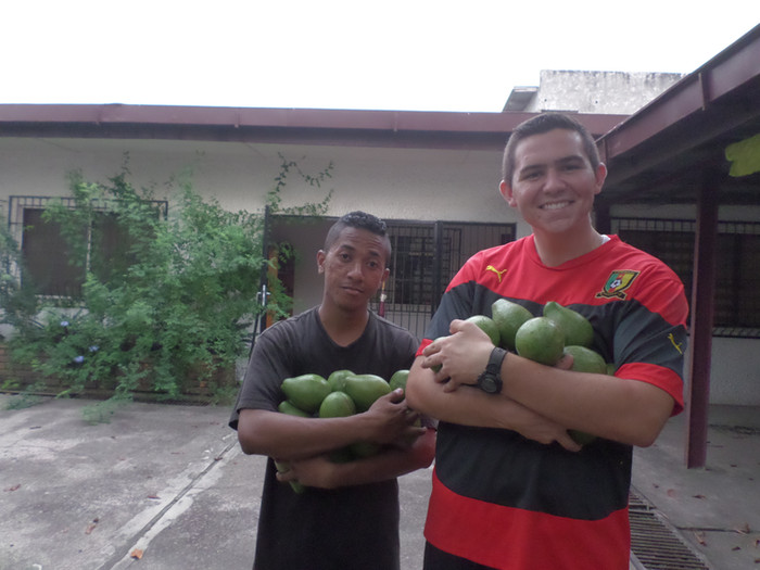 Baptisms and Avacados
