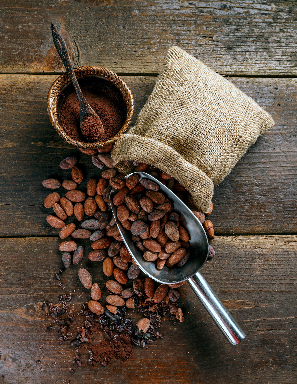 organic-cacao-beans-P39KVAJ.jpg