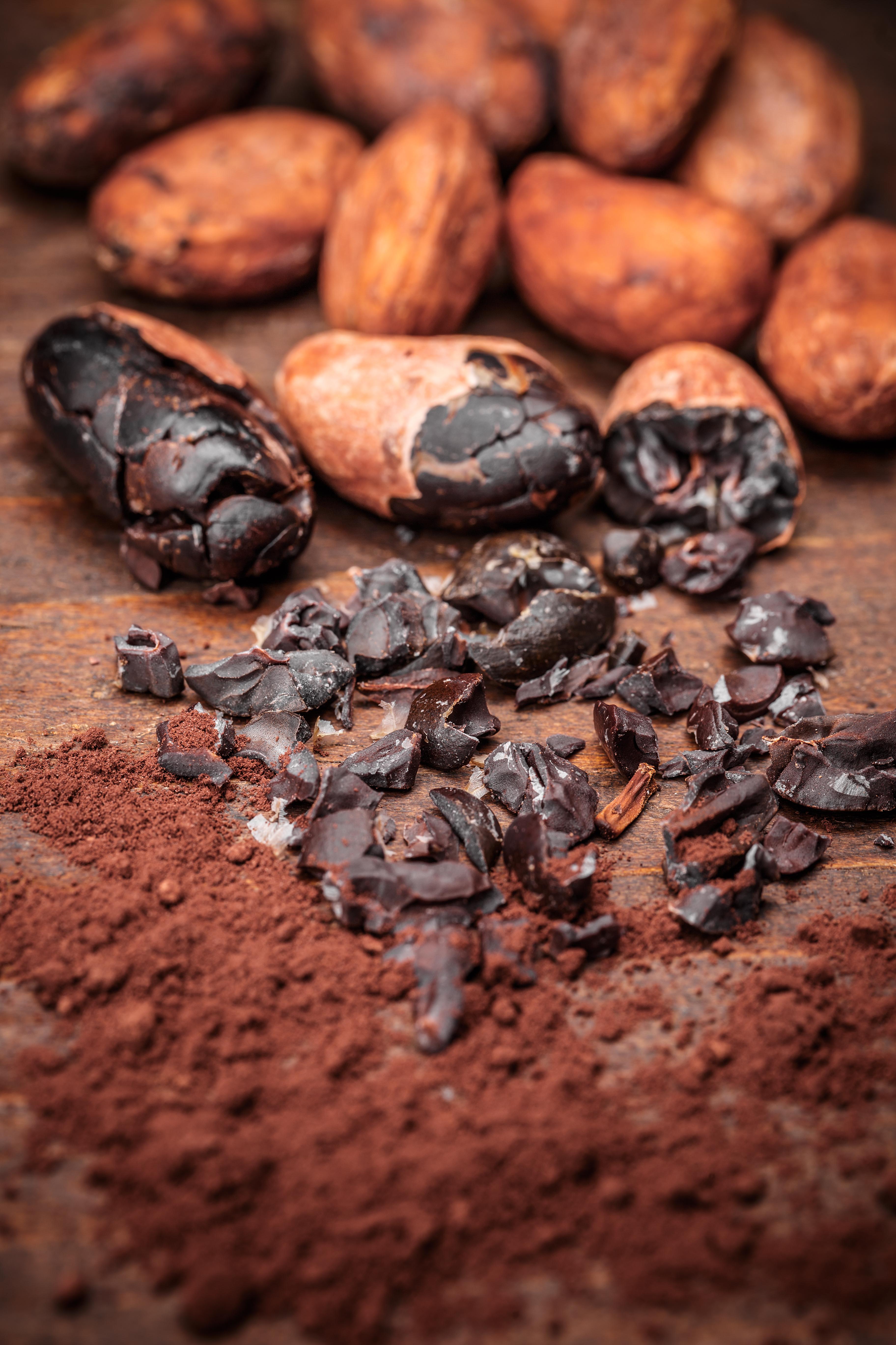 cacao-nibs-PWFJGEC.jpg