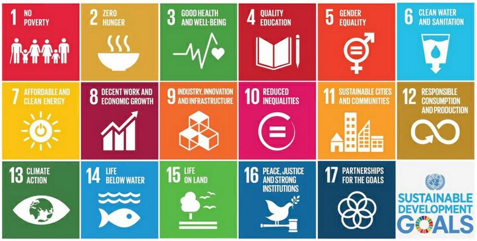 17 Development Goals.png