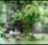 atelier_belleville_edited.jpg