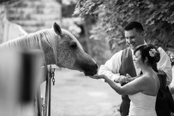 Photo Expressions Wedding Photography 022