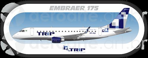 Adesivo Perfil Embraer 175 TRIP