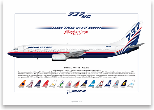 Pôster Perfil Boeing 737-800 Protótipo