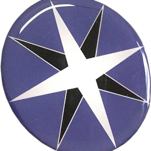Adesivo Resinado Logo VARIG