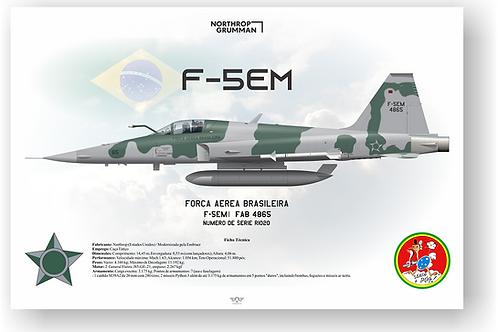 Pôster Perfil F-5EM FAB