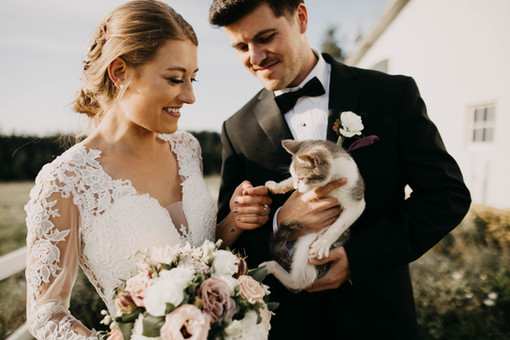 Wedding shoot with kitten in Prince Edward Island