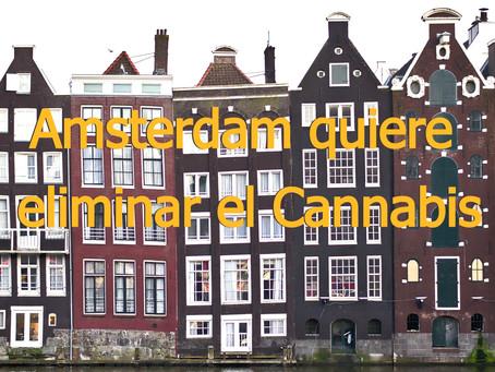 Amsterdam quiere eliminar el cannabis