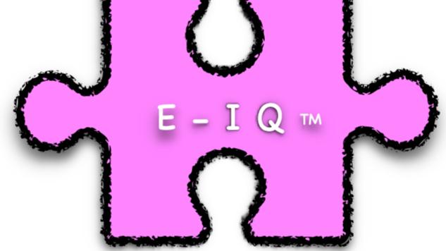 E-IQ (TM) Emotional Intelligence Relationship Cards Add On
