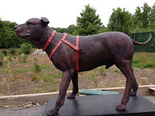 Final bronze dog statue without patina in lost wax casting process