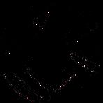 logo_novo_nepa_black.png