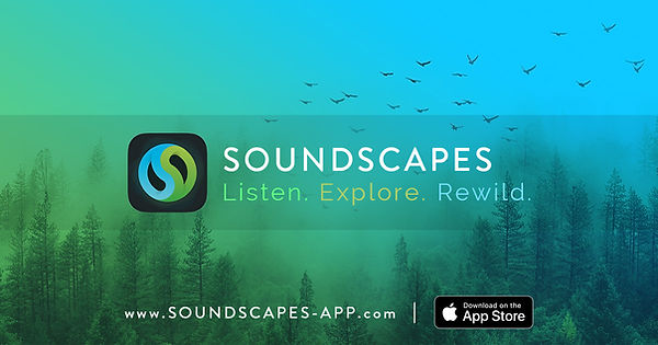 soundscapes-banner-1200x630-EN.jpg