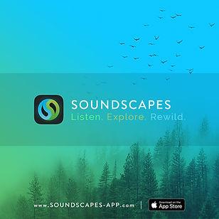 soundscapes-banner-1080x1080-EN.jpg
