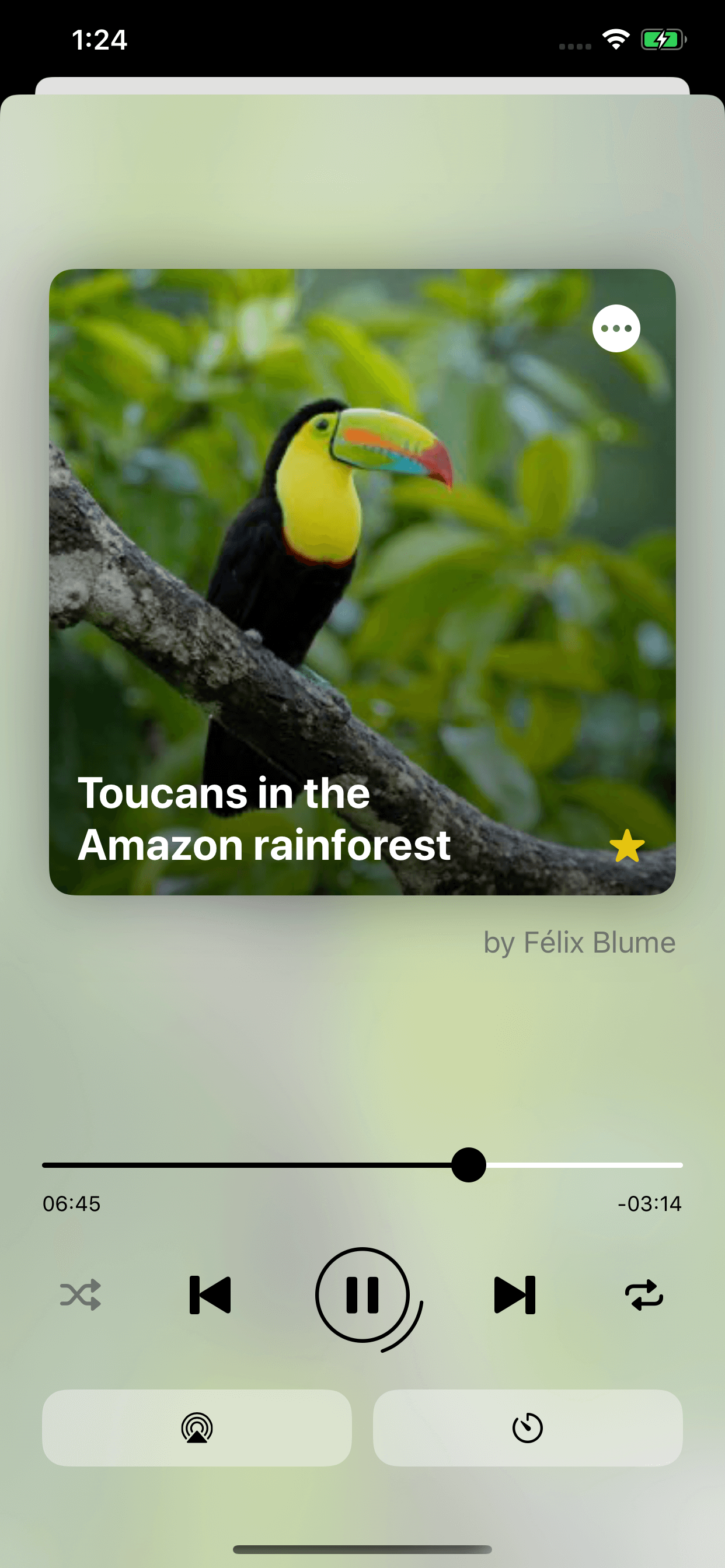 Soundscapes - A New Mobile App to Reconnect with Nature Image