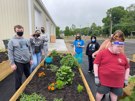 Cultivating ABLE Plots: A Glassboro Community Garden Story