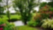 pexels-photo-145685.jpg_auto=compress&cs