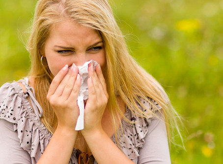 What is hay fever (allergic rhinitis)