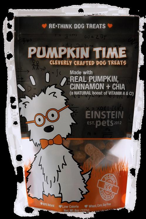 Einsten Pets Pumpkin Time