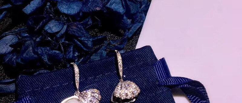 APM  Earrings Crystal 925Silver