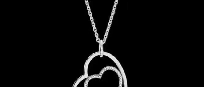 CHANEL Necklace Silver952