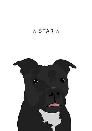 Star Roberts-web.png