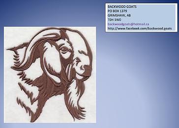 backwoods goat.png.opt455x326o0,0s455x32