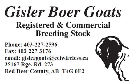 Gislter Boer Logo.png