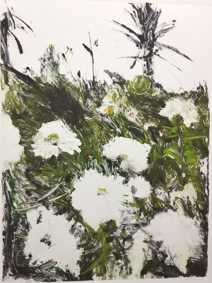 White Dahlias, Giverny (ghost)