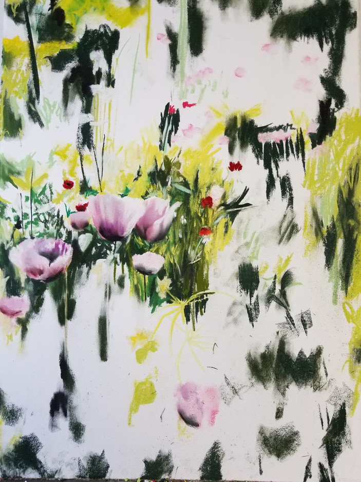 Pink Poppies, Giverny